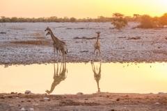 Namibia-1531-Medium