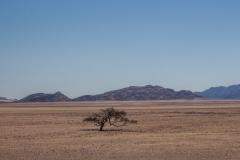 Namibia-5757-Medium
