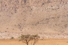 Namibia-5804-Medium