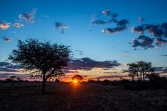 Namibia-9136-Medium